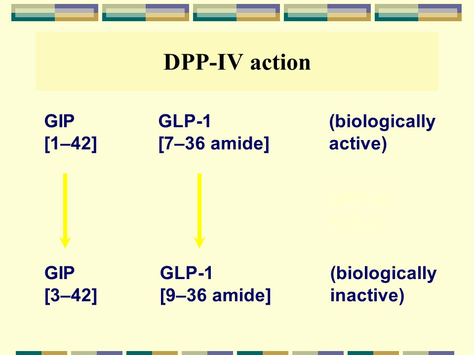 DPP-IV action GIP GLP-1 (biologically [1–42] [7–36 amide] active)